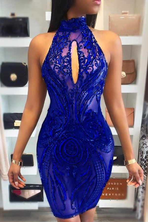 Sexy Turtleneck See-Through Backless Blue Polyester Sheath Knee Length Dress Dresses <br><br>