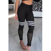 Trendy High Waist Gauze Patchwork Black Polyester