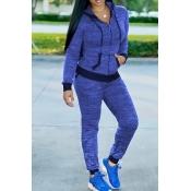 Adorável Casual Colarinho Colarinho Zíper Design Azul Tricô De Duas Partes Calças Conjunto