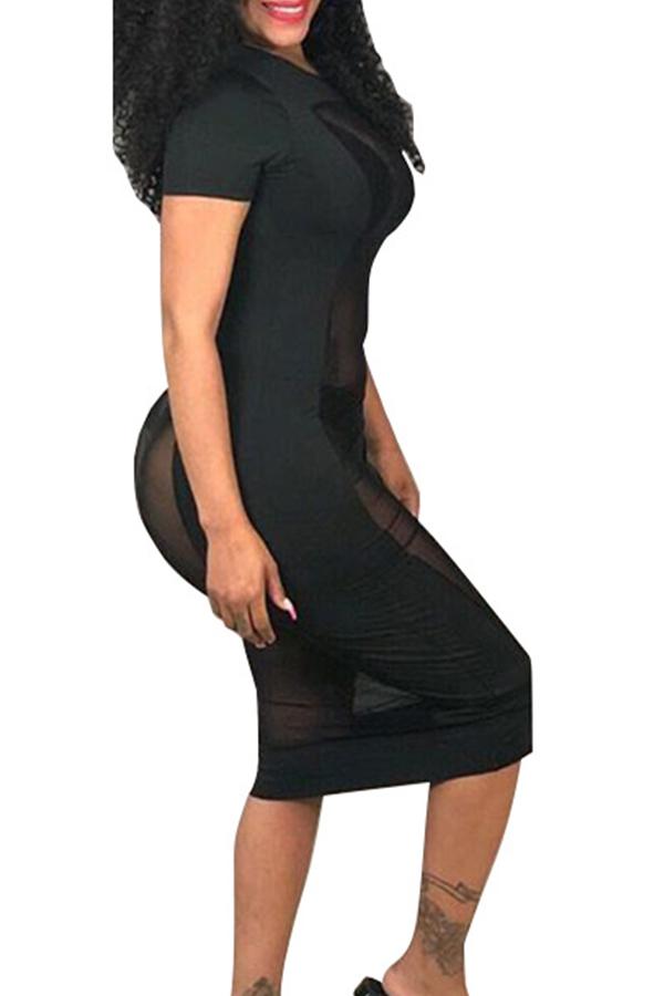 Lovely Sexy Transparency Black Blending Sheath  Knee Length Dress