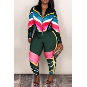Lovely Sportswear Patchwork Deep Green Blending Two-piece Pants Set