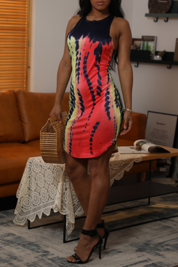 Lovely Casual O Neck Printed Multicolor Mini Dress