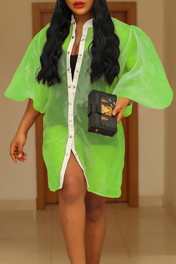 Lovely Leisure See-through Green Coat