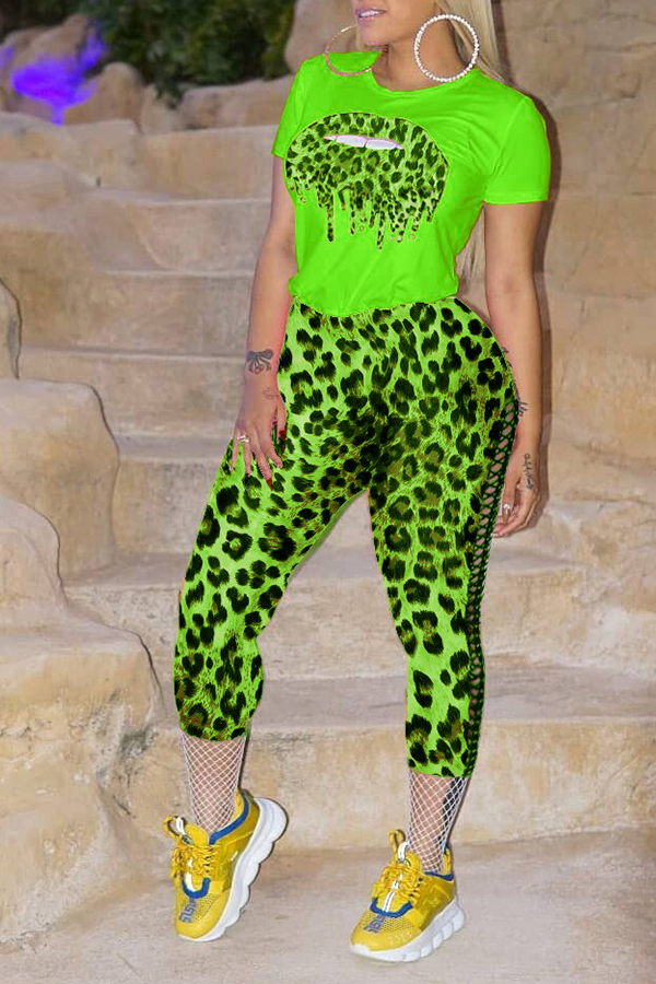 Lovely Casual O Neck Printed Green Two-piece Pants Set