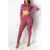 Lovely Chic Printed Purple Two-piece Pants Set