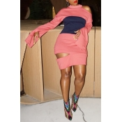 Lovely Casual Patchwork Pink Mini Dress