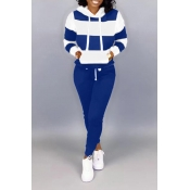 Lovely Casual Hooded Collar Patchwork Blue Two Piece Pants Set