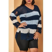 Lovely Casual Striped Blue Plus Size Sweater