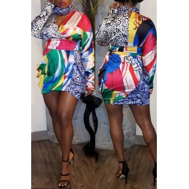 Lovely Casual Printed Multicolor Mini Dress