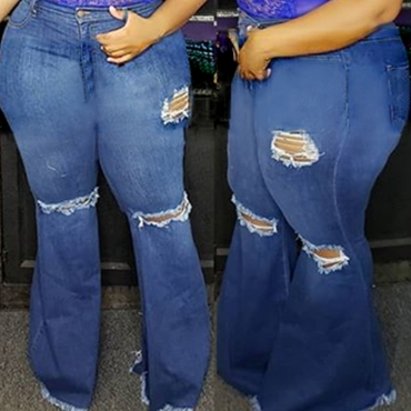 Lovely Trendy Broken Holes Blue Plus Size Jeans