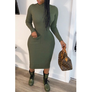 Lovely Casual Turtleneck Blackish Green Mid Calf  Dress