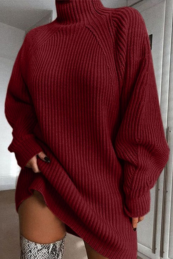 Lovely Casual Turtleneck Wine Red Mini Dress