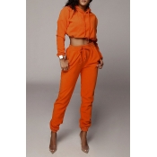 Lovely Casual Crop Top Croci Two-piece Pants Set