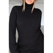 Lovely Casual Turtleneck Black Mini Dress