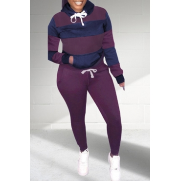 Lovely Casual Patchwork Purple Plus Size Two-piece Pants Set