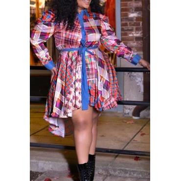 Lovely Casual Turndown Collar Plaid Print Multicolor Plus Size Mini Dress