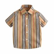 Lovely Casual Striped Print  Boys Shirt