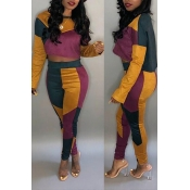 Lovely Leisure Patchwork Purple Two-piece Pants Se