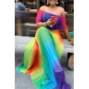 Lovely Trendy Print Multicolor Maxi Plus Size Dres