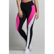 Lovely Sportswear Patchwork Rose Red Pants