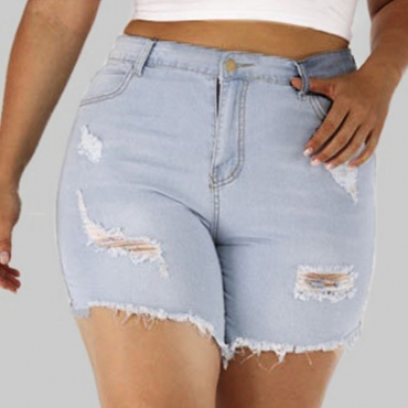Lovely Casual Broken Holes Baby Blue Plus Size Shorts
