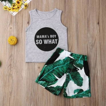 Lovely Leisure Print Grey Boy Two-piece Shorts Set
