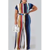 lovely Stylish Striped Royalblue Plus Size Two-pie
