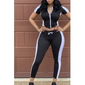 lovely Sportswear Patchwork Black Plus Size Two-pi