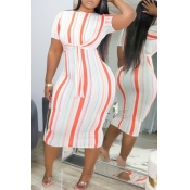 lovely Casual O Neck Striped Knee Length Plus Size