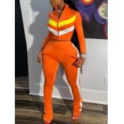 lovely Sportswear Zipper Design Patchwork Croci Pl