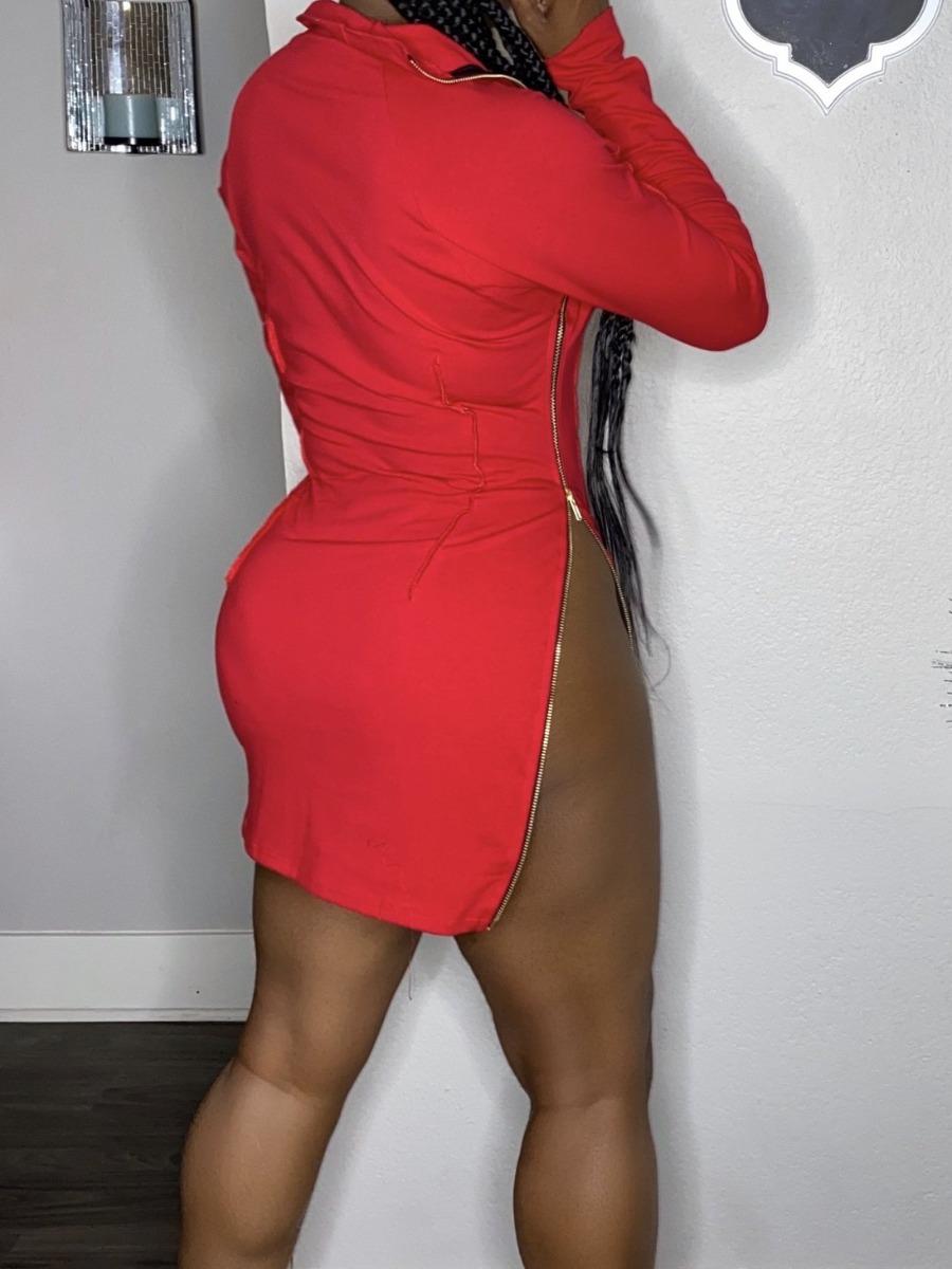 Lovely Casual Turndown Collar Zipper Design Red Mini Dress